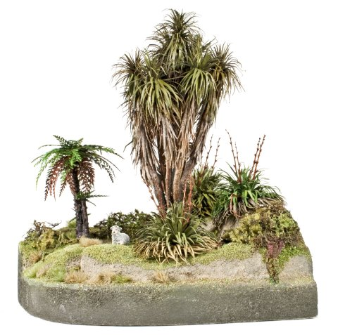 New Zealand Native bush diorama